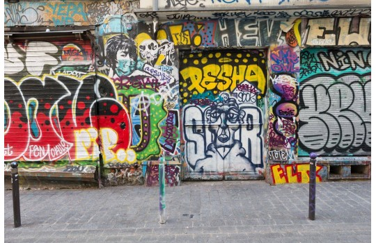 Private tour: The Paris of Street Art
